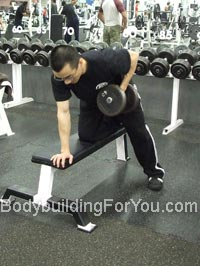 1 arm dumbbell row