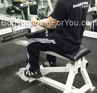 seated calve raises